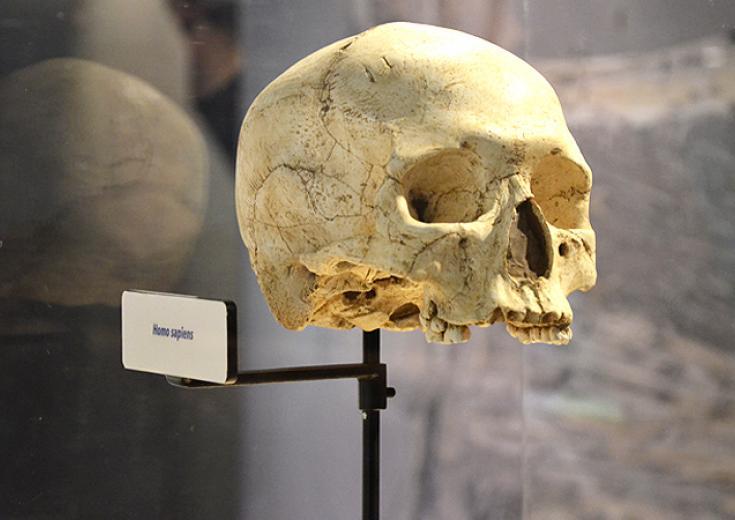 Musée de préhistoire à Saulges dans les Coëvrons