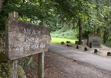 Le bois du Tay en Mayenne
